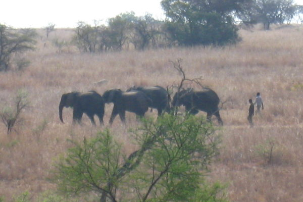Zimbabwe Scenery (20)
