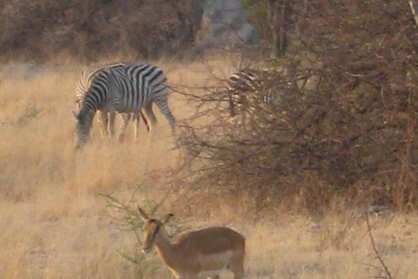 Zimbabwe Scenery (3)