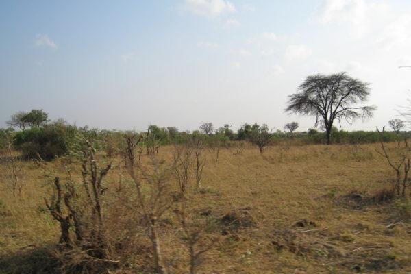 Zimbabwe Scenery (5)