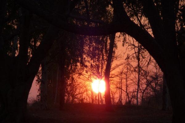 Zimbabwe Scenery (1)